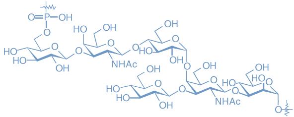 Clostridium difficile molecule.