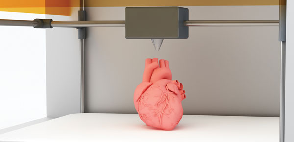 The holy grail of 3D printing is the creation of human organs from biopolymers.