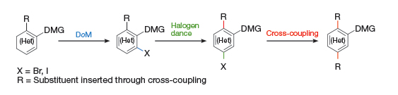 Directed ortho metalation can been carried out on aromatic and heteroaromatic compounds in conjunction with halogen dance reactions, which provide the ability to migrate elements such as iodine to a thermodynamically stable anion.