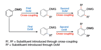 A demonstration of the power and advantage of directed ortho metalation for synthesis, whereby individual functional groups can be selected as part of a cross-coupling strategy.