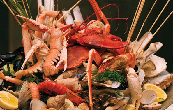 Crustacean shells contain the useful compound calcium carbonate.
