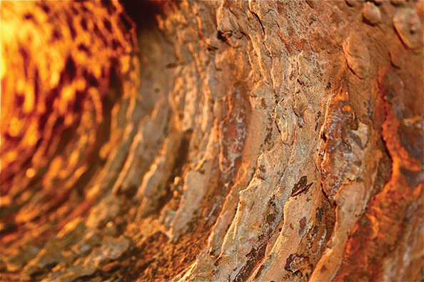 Severe microbial corrosion inside­ a crude oil pipeline.