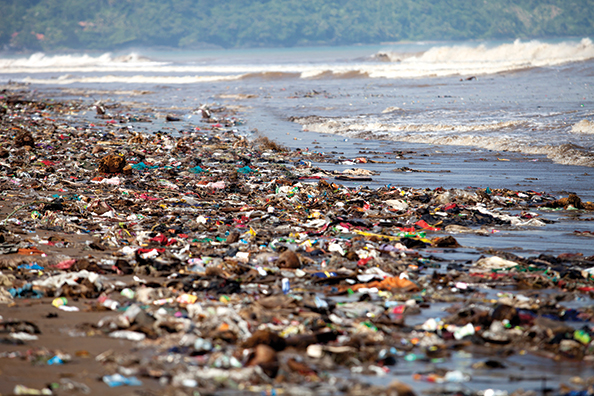 Some of the globe's more than six billion tonnes of plastic waste end up in the ocean, devastating­ marine life. Helping find solutions to this environmental threat is David Levin, who studies­ bacteria that degrade such polymers as polyethylene, used to make plastic bags.