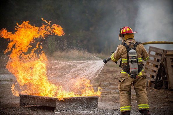 FireRein, based in the eastern Ontario centre of Napanee, has developed an commercially viable fire-fighting gel made entirely from food grade materials.