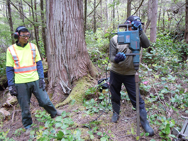 Martindale's team drives a corer into the ground to investigate thousand-year-old settlements in northern BC.