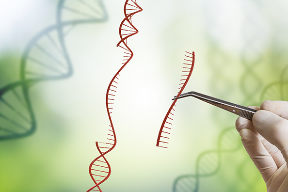 Gene editing gets unrestricted