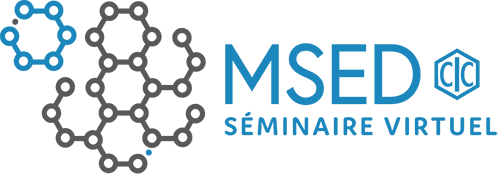 MSED identifier virtual seminar