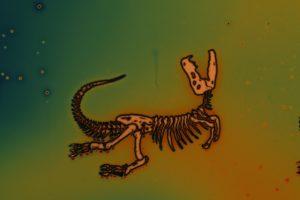 21-02-09-ChemiSTEAM-VanessaBeland-Tyranosaur